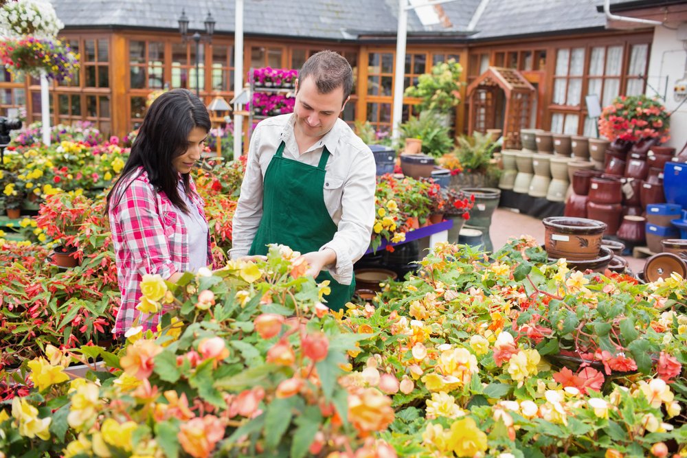 Garden centres see lowest sales since 2013